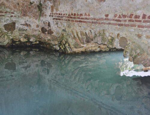 Baños de la Hedionda (Casares)